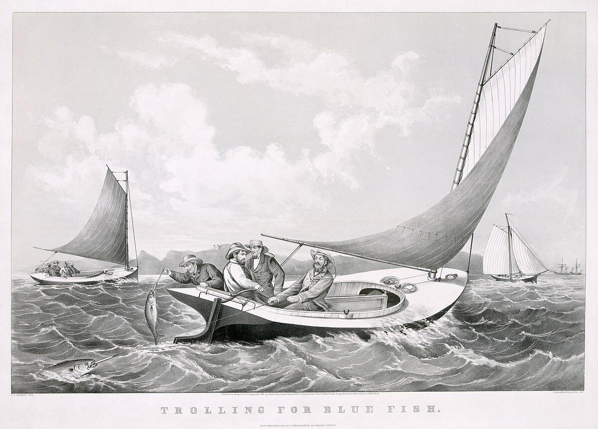 Sailboat Paintings Pencil Art