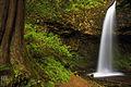 Upper Latourell Falls (6252429951).jpg