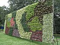 Vertical Garden from Lalbagh flower show Aug 2013 8786.JPG