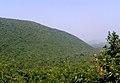 View of Eastern ghats from Gudilova 02.jpg