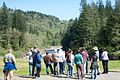 Viewing former Marmot Dam site.jpg