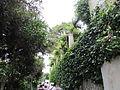 Villa San Michele din Anacapri4.jpg