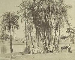 التاريخ والحضاره الغربيه _أنطونيو بياتو