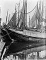 Vissersschepen in de haven van IJmuiden, Bestanddeelnr 252-0662.jpg