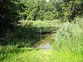 Vrijdag 23 augustus 2013. Near Weisweil, Germany - panoramio (1).jpg