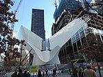WTC hub bird 2015-11 jeh.JPG