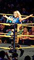 WWE NXT 2015-03-28 00-10-04 ILCE-6000 3878 DxO (17179164378).jpg