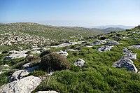 Wadi-Makukh-Mitzpe-Dani-497.jpg