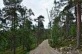 Walking trail, Inari, Finland (17) (35848922224).jpg
