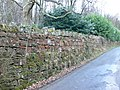 Wall enclosing Tower Wood - geograph.org.uk - 756703.jpg