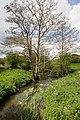 Wallington River at Boarhunt Mill - geograph.org.uk - 1283258.jpg