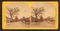 Washington Street, by Lewis, T. (Thomas R.), d. 1901.png