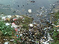 Water pollution due to domestic garbage at RK Beach 01.jpg