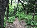 Waubonsie State Park.jpg