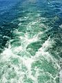 Waves produced by a cruising boat at the 1000 Islands - panoramio.jpg