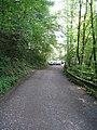 Weg - Aggertalsperre - geo.hlipp.de - 15055.jpg