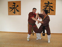 Grand Master Andreas Hoffmann and Master Haydar Yilmaz demonstrating Chi Sao in action