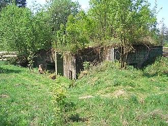 Hürtgen Forest - Siegfried Line bunker in the northern Eifel