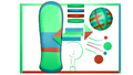 Wikidata Logo nkansah rexford ghana.png