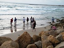 Wikimania 2011 beach party 1 - Stierch.jpg
