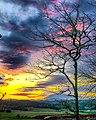 Willamina Sunset.jpg