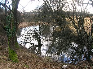 Lands of Willowyard - Old ornamental pond formed from an old Whinstone quarry