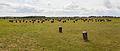 Woodhenge, Wiltshire, Inglaterra, 2014-08-12, DD 01.JPG