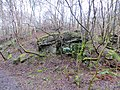 Woodland taking over the old quarry close to Ellwood - Feb 2014 - panoramio.jpg