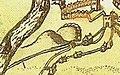 Worcester Castle 1610.jpg