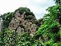 Xian hua west hill -Pujiang - China - panoramio.jpg