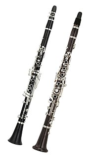 Clarinet type of woodwind instrument