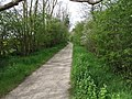 """Green Lane"" a green lane - geograph.org.uk - 409480.jpg"