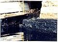 's Hertogenmolens - 317423 - onroerenderfgoed.jpg