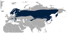 (Eurasian) Three-toed Woodpecker Picoides tridactylus distribution in Eurasia map.png