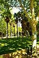 ® M.D. MADRID TEMPLO y PARQUE DEBOD┼ - panoramio.jpg