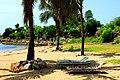 ¿Te animas a una cabezacita bajo esas palmeras para liberar el estrés - panoramio.jpg