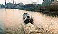 Łaba w Dreźnie, 13.1.2001r.jpg