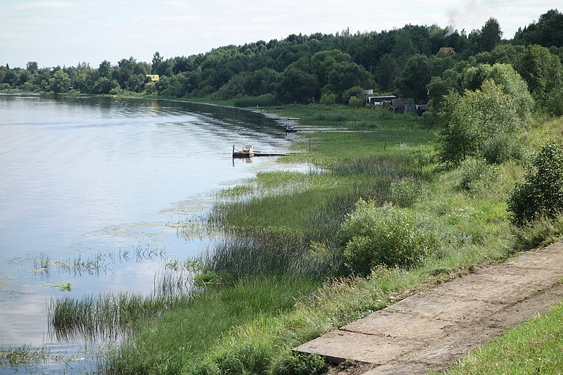 File:Берег Волхова - panoramio (1).jpg