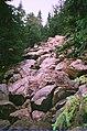 Каменная река хребта Зюраткуль, курумник 1.jpg