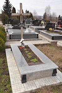 Міське кладовище біля с. Підгороднє — могила Миколи Невеселого - 16038018.jpg