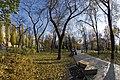Осень в парке DSC 8051.jpg