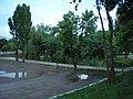 Пруд в парке - panoramio.jpg