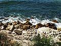 Пръски от морето.jpg