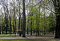 Сквер ім. Т. Г. Шевченка в Хмельницькому P1210109.JPG