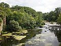 Скелясті берег річки Рось у Корсунь-Шевченківському парку.JPG