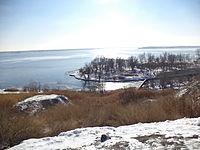 Устье Мокрой Мечётки 25 января 2013.JPG