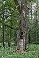 Фото путешествия по Беларуси 117.jpg