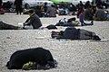 خستگی مردم (زائرین) در پیاده روی اربعین- مرز مهران- ایران 09.jpg