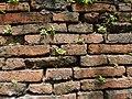 กำแพงวังเจ้าฟ้ากรมขุนอิศรานุรักษ์ และกรมหมื่นเทวานุรักษ์ (3).jpg