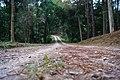 สวนชัชนาถ รีสอร์ท - panoramio (3).jpg